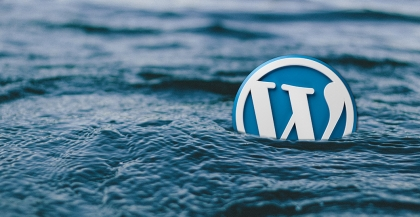 Why Use WordPress as Your CMS