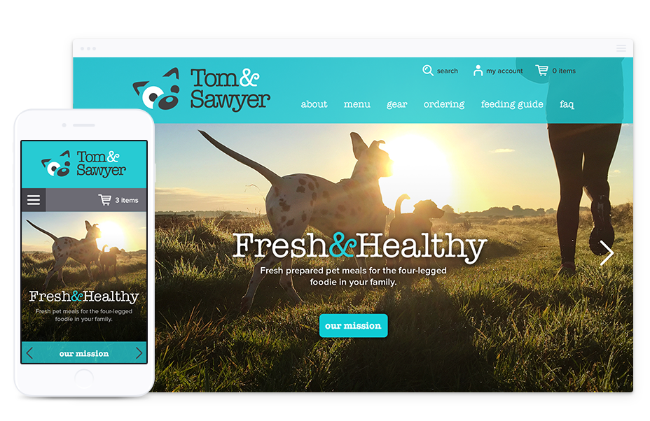 B2C Web Design for Tom&Sawyer - Parachute Design, Toronto Web Design Company