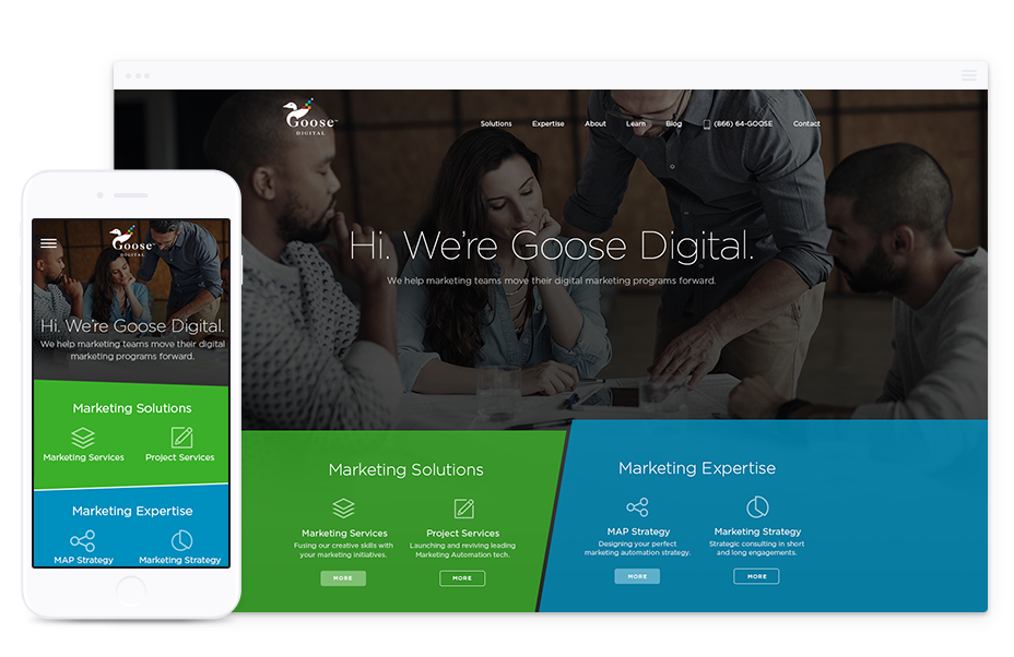 Web Design for B2B, Goose Digital