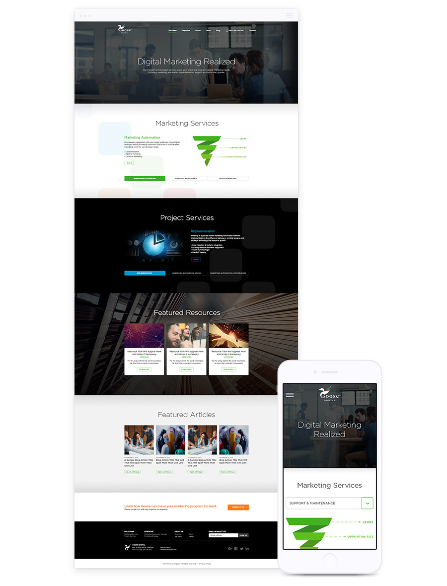 Website Design for B2B, Goose Digital